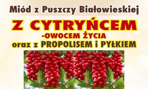 Miód z Puszczy Białowieskiej z cytryńcem – owocem życia oraz z propolisem i pyłkiem