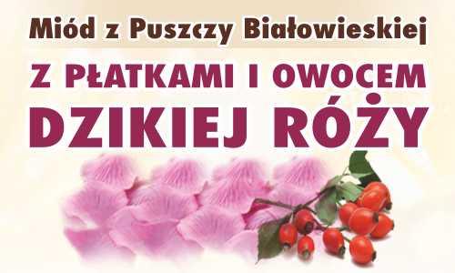 Miód z Puszczy Białowieskiej z płatkami i owocem dzikiej róży