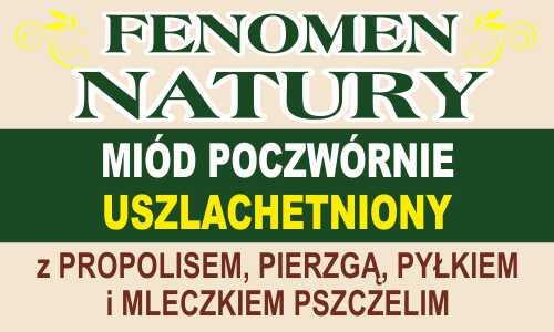 Fenomen Natury – Miód poczwórnie uszlachetniony – z propolisem, pierzgą, pyłkiem i mleczkiem pszczelim