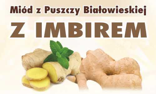 Miód z Puszczy Białowieskiej z imbirem