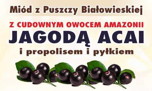 Miód z Puszczy Białowieskiej z jagodą acai