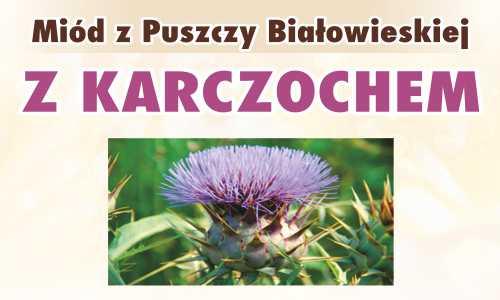 Miód z Puszczy Białowieskiej z karczochem