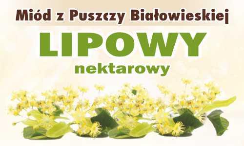 Miód z Puszczy Białowieskiej z lipą nektarowy