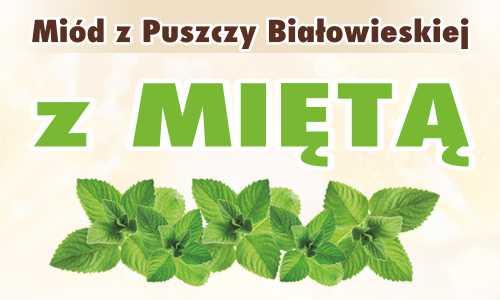 Miód z Puszczy Białowieskiej z miętą