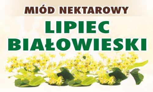 Miód nektarowy Lipiec Białowieski