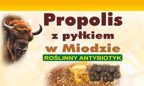 Propolis z Pyłkiem w Miodzie Roślinny Antybiotyk