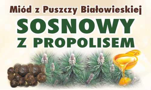 Miód z Puszczy Białowieskiej Sosnowy z propolisem